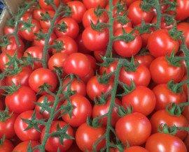 Tomates.Palet grande: 110 cajas