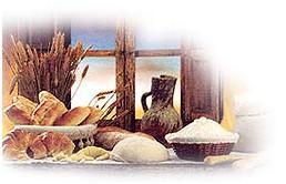 Proveedores de harina. Harina de trigo de varios tipos y sémolas