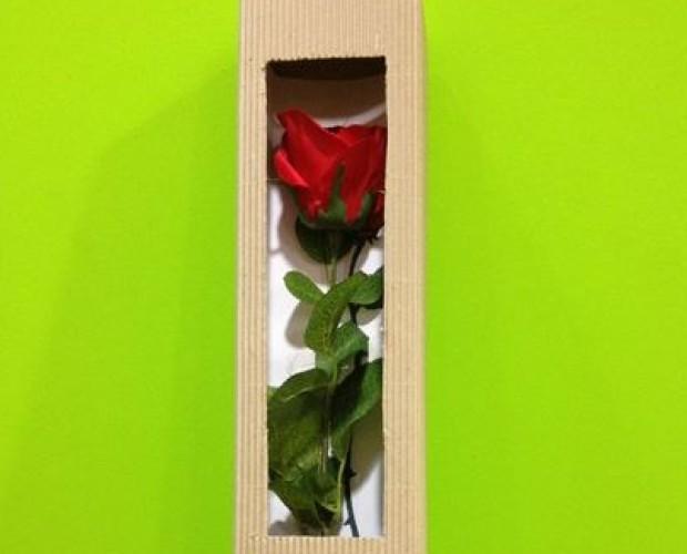 Fundas, Conos y Cajas para Embalaje de Flores.fundas, conos y cajas para embalaje de flores