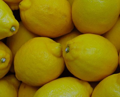 Limones.Somos productores de Limones del valle del Guadalhorce los cuales son recolectados en el momento del envío