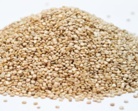 Quinoa.Certificada de agricultura bio. 25kg, 45kg y TM