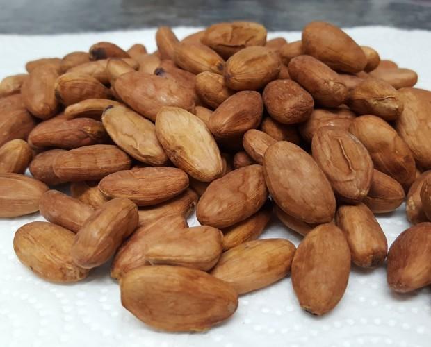 Cacao Fino de Aroma. Habas de cacao fino de aroma, criollo. Ecuador