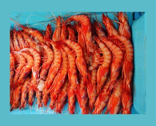 Gamba roja\Alistados. Forma parte de la historia y gastronomía Onubense