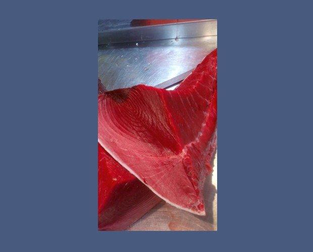 Atun Rojo Lomo. Se lo conoce también como atún de aleta azul