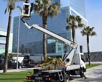 Alquiler de Camiones Ligeros.Camión cesta hasta 20 mts. Altura de trabajo