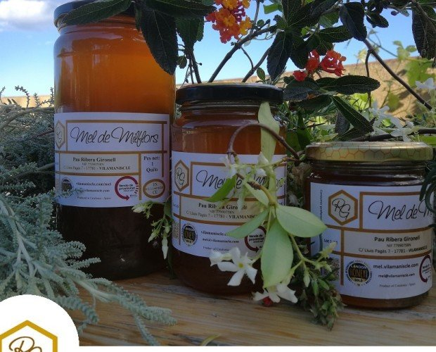 Miel Natural.Miel natural en envases de 1kg 300 y 500 gramos