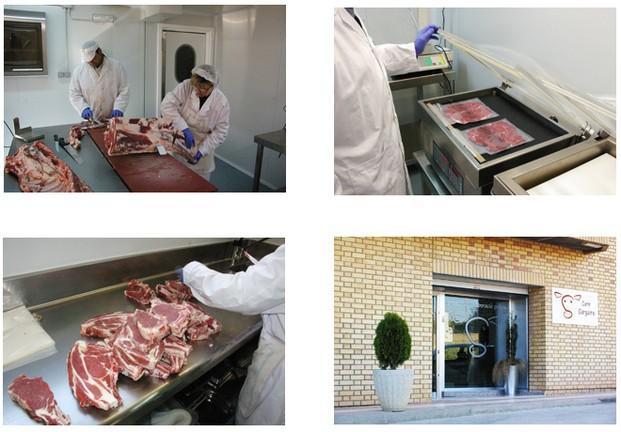 Carne de ternera. Entrecots, bistecs, escalopas, carne picada