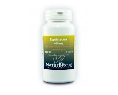 Equinácea. Se usa mucho para prevenir infecciones, especialmente del resfrío común y otras infecciones del tracto respiratorio superior