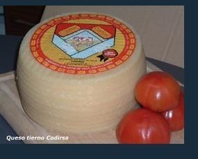 Quesos. Deliciosos quesos