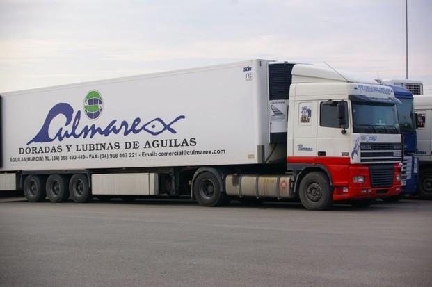Transporte. Ofrecemos transporte de mercancías de todo tipo