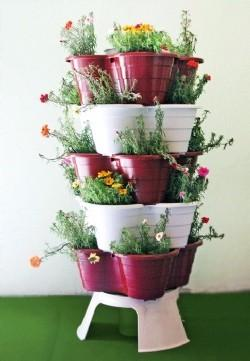 Macetas. Variedad de plantas para su jardín