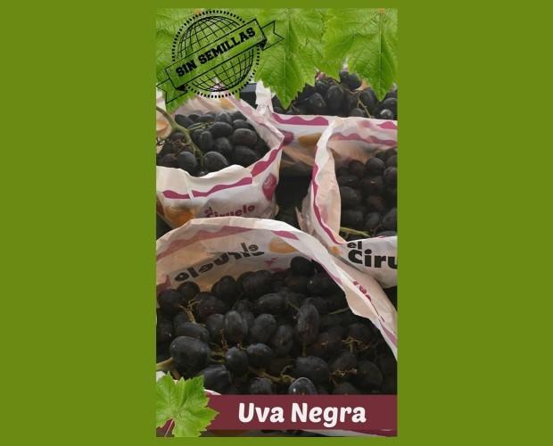 Uvas.Uva negra sin semilla