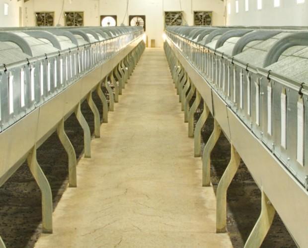 Granjas propias. Disponemos de granjas propias y nos proveemos de granjas de Navarra, País vasco, Aragón y Castilla y León.