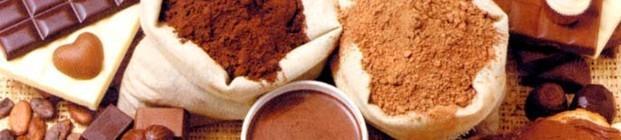 Cacao en polvo. Cacao y coberturas en envases de 5, 10 y 20 kg