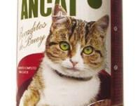 Ancat