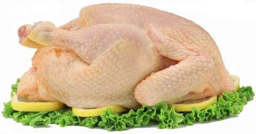 Carne de Ave. Pollos, pavos, perdices y cordornices