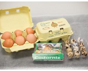 Huevos Frescos de Gallina.Huevos frescos