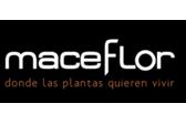 Maceflor