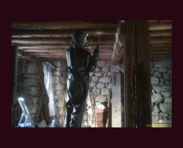 Tratamiento anticarcomas. Tratamientos insecticidas contra carcomas y termitas en estructuras de madera