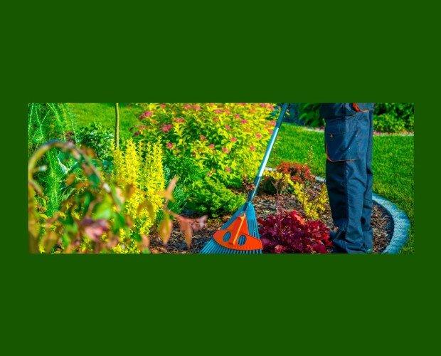 Limpieza de Jardinería. Ofrecemos nuestro servicios de jardines a comunidades y hogares