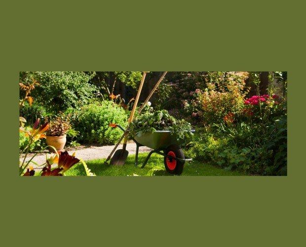 Servicio de jardinería. Poda estacional, muros, eliminación de desechos y malas hierbas y abono