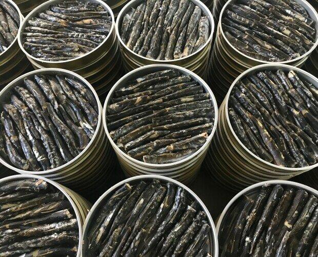 Sardinilla Ahumada. Recién empacadas...listas para recibir el aceite de oliva ....