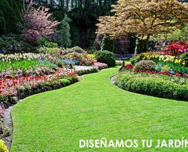 Diseño de Jardines y Paisajismo.Mantenimiento de césped natural