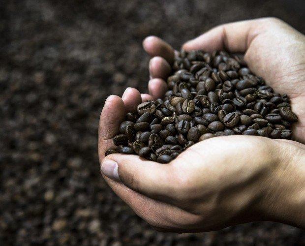 El mejor café en grano. Ponemos en tus manos el mejor café en grano
