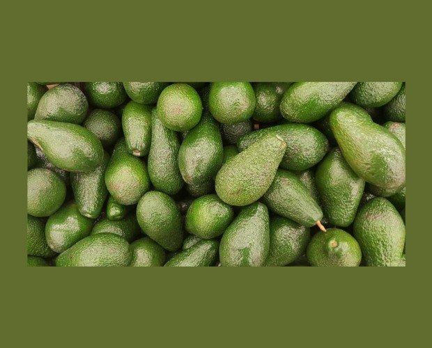 Aguacates. Aportamos frutos frescos durante todo el año