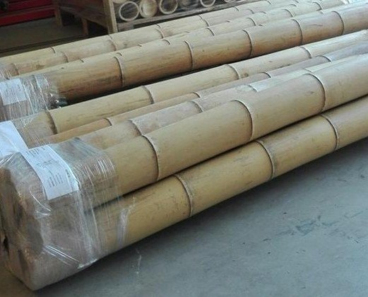 Bambú.Diferentes procedencias