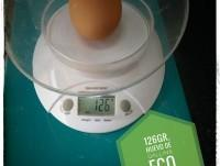 Proveedores Huevos ECO