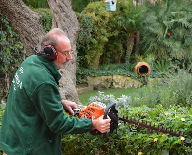 Diseño de Jardines y Paisajismo.Limpieza, diseño y mantenimiento de jardines