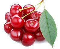 Cereza. Rico fruto del bosque