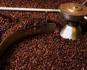 Café seleccionado. Café de la más alta calidad
