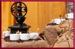 Proveedores de Café. Selección de café