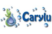 Jabones Carylu