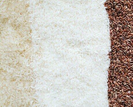 Cereales. Granos y harinas; Arroz, Avena, Trigo