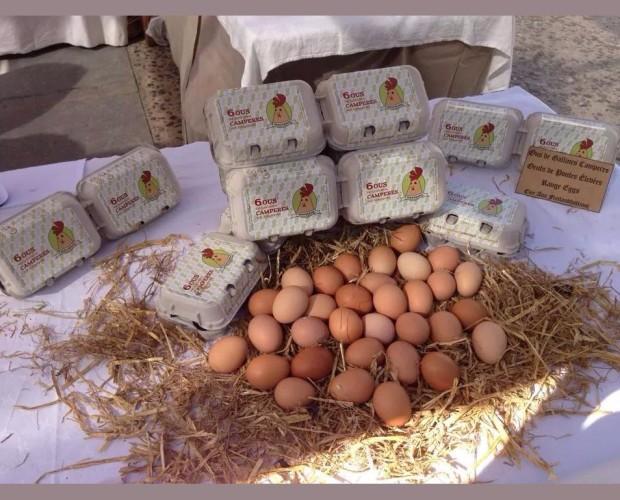 Huevos Camperos.Máxima calidad