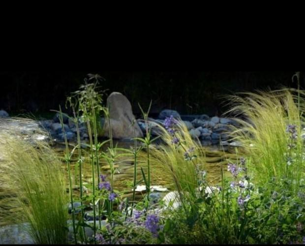 Diseño de Jardines y Paisajismo.Diseñamos jardines sostenibles y con encanto