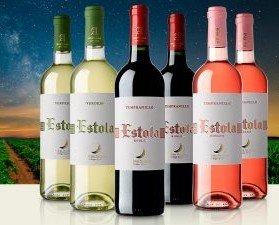 Variedad de vinos. Ofrecemos vino blanco, tinto y rosado