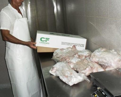 Envasado de la carne. La carne se envasa al vacío a -18 º para export.