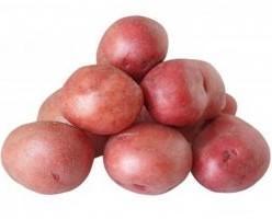 Patatas Rojas. Idales para freír.