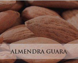 Almendra Guara. Gran variedad  y presentaciones