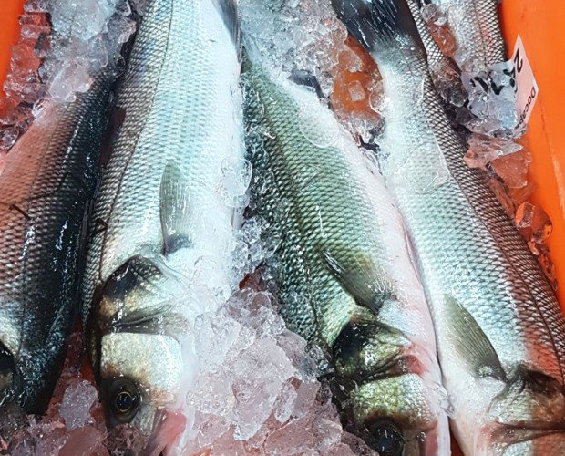 Lubina Fresca.También conocido como róbalo, pescado blanco o semigraso según la época del año