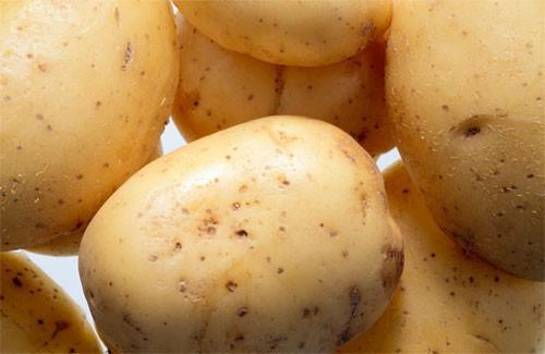 Patatas.Cebollas, ajo y legumbres.