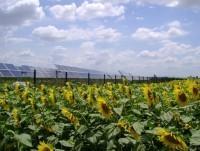 Huertos Solares