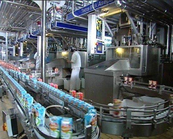 Productos lácteos. Quesos y yougurt
