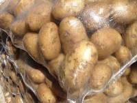 Patatas en saco 25kg