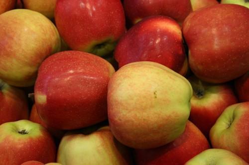 Frutas. Cerezas, albaricoques