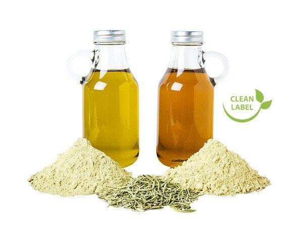 Antioxidante Natural. Extracto de romero en polvo y líquido como antioxidante natural.